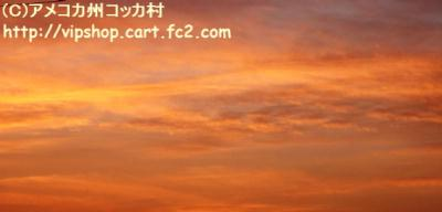 1DSC06026.jpg