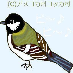 美声の小鳥さんと庭花 アメコカ州コッカ村 日記