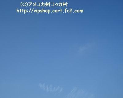 1DSC01878.jpg