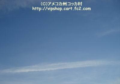 1DSC02002.jpg