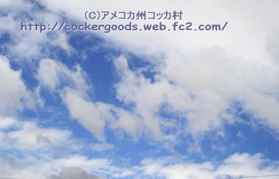 1DSC06245.jpg
