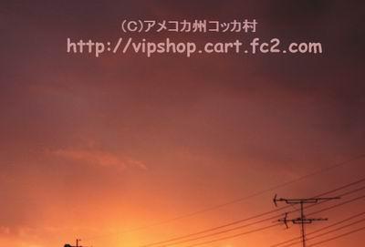 1DSC08185.jpg