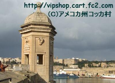 1コピー~ 2012_0211malta0061.jpg