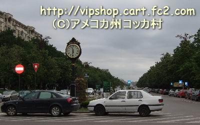1rmoppy2.jpg